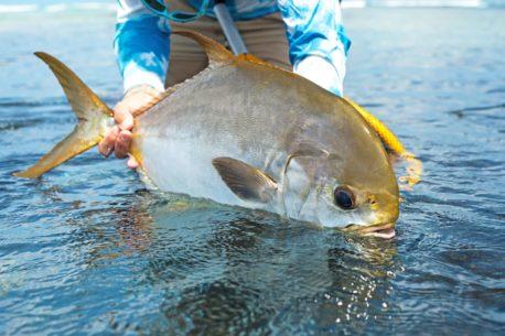 vacanza di pesca Seychelles