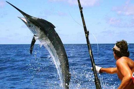 La pesca al Marlin