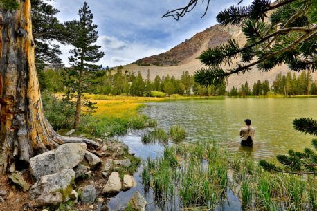 I 10 viaggi di pesca più belli del mondo